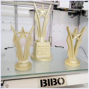 BIBO2 Touch Laser X 3D Print Sample